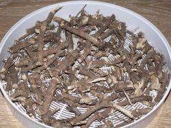 купить корни элеутерококка